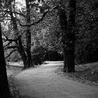 Großer Garten - Carolasee