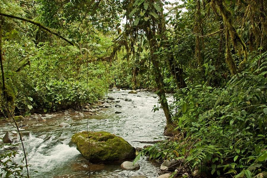 Umachaca River 1
