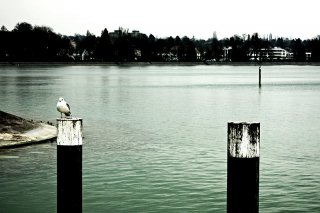 Bild des Tages 27.12.2010 - _i__I_