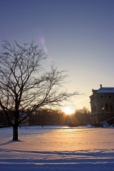 Bild des Tages 19.12.2010 - Winterwunderland