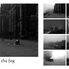 Bild des Tages 09.12.2010 - Dresden Kalender 2011