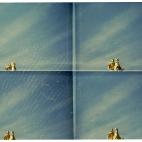 Bild des Tages 28.02.2011 - Goldener Reiter