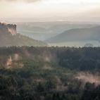 Nebelschwaden Gohrisch IV