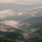 Nebelschwaden II