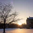 Winter im Großen Garten Dresden