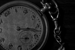 Bild des Tages 30.01.2011 - as time goes by