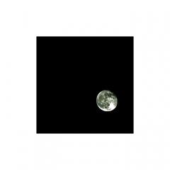 Bild des Tages 26.01.2011 - Mondlandung