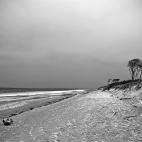 Bild des Tages 09.07.2011 - Darß im Winter