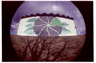 Bild des Tages 14.05.2011 - green energy