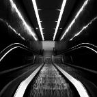 lines black & white