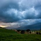 Nationalpark Cotopaxi 5