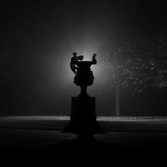 Bild des Tages 13.11.2010 - Licht und Nebel