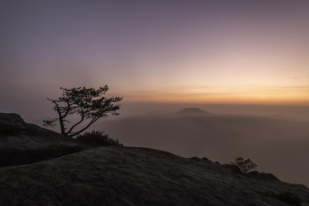 Pfaffenstein im Nebel