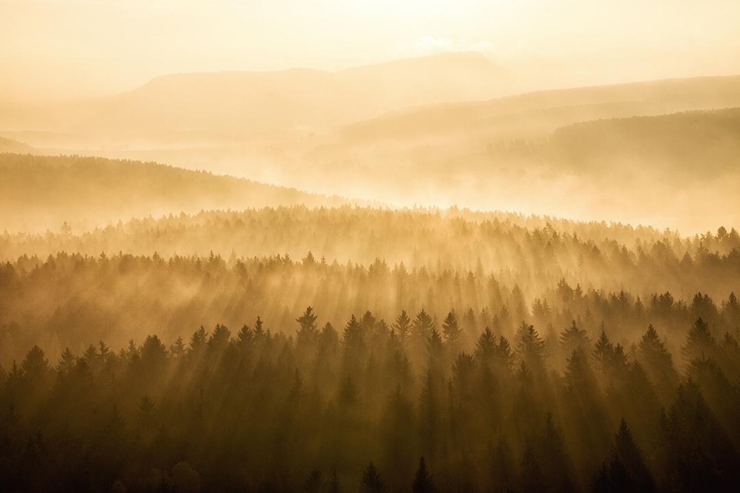 Sonnenstrahlen im Elbsandsteingebirge