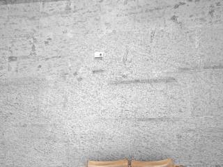 Bild des Tages 06.09.2011 - Zweisitzer