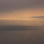 Bild des Tages 24.09.2010 - Einsamer Fischer