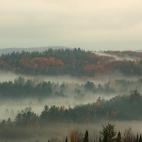 Nebelwogen