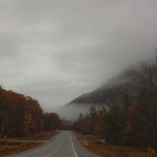 on the foggy road
